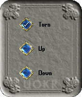 Ultima Online: Menu Interior Decorator