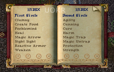 Ultima Online: Spellbook for Mage