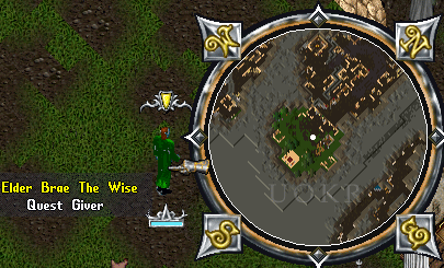 Ultima Online: Elder Brae the Wise