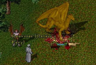 The Abyss. Сервер Ultima Online: Парагоны